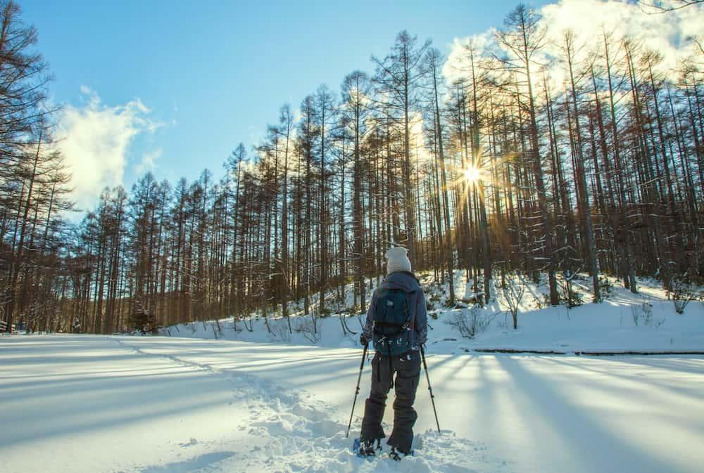Raquette neige en forêt
